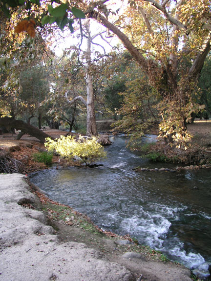 [ Photo of Coyote Creek. ]